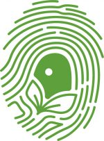Acquaponica.blog, cos'è e come funziona l'acquaponica? perché l'acquaponica? il blog italiano sull'acquaponica. Aziende, manuali, e-commerce e soluzioni personalizzate per impianti, studi e ricerche.cibo biologico con la stessa acqua piante e pesci in cucina per la ristorazione hotel bio e sano in acquaponica.Acquaponica Ponics Azienda italiana Sistema modulare Grow Bed Acquaponica.blog, cos'è e come funziona l'acquaponica, qual'è la sua storia e cos'è e come funziona il ciclo dell'azoto. quali pesci usare e quali piante mettere nell'impianto di acquaponica. Business plan e come realizzare u impianto in acquaponica. Coltivazioni biologiche e fuori suolo senza additivi e ecologici. Ristoranti, bar Hotel